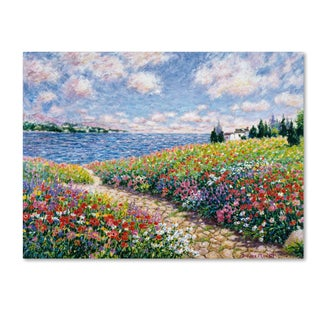 Diane Monet 'Path to the Beach' Canvas Art