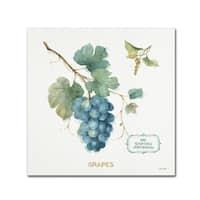 Lisa Audit 'My Greenhouse Fruit III' Canvas Art