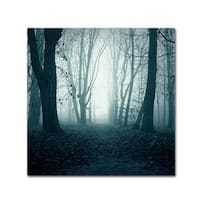 Mark Ashkenazi 'Forest' Canvas Art