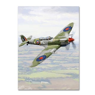 The Macneil Studio 'Spitfire' Canvas Art