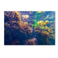 Yale Gurney 'Underwater Abstract' Canvas Art