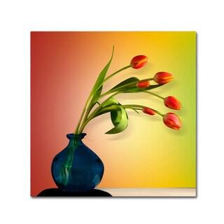 Mark Ashkenazi 'Tulips 5' Canvas Art