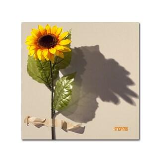 Roderick Stevens 'Sunflower' Canvas Art