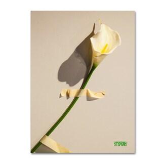 Roderick Stevens 'Lily' Canvas Art