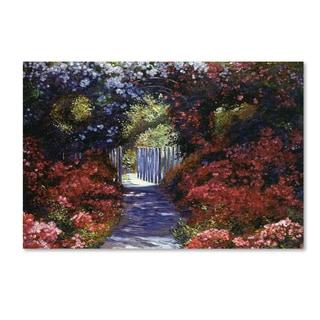 David Lloyd Glover 'Garden for Dreamers' Canvas Art