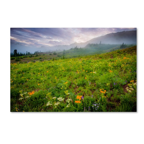 Dan Ballard 'Colorado Flowers' Canvas Art