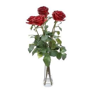Gold Eagle Roses with Glass Vase Faux-flower Arrangement