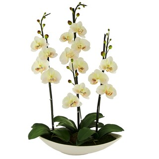 Red Vanilla White/Beige Artificial Silk Phalaenopsis Centerpiece
