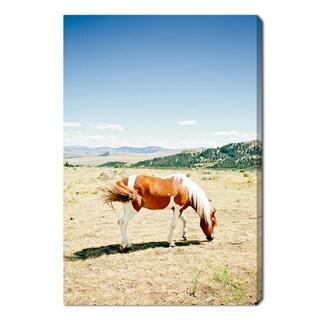 Oliver Gal 'Willow The Horse by Cassandra Eldridge' Canvas Art
