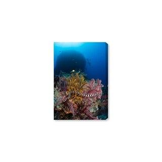 Oliver Gal 'Sea Krait by David Fleetham' Canvas Art