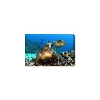 Oliver Gal 'Two Green Sea Turtle by David Fleetham' Animals Wall Art Canvas Print - Blue, Green