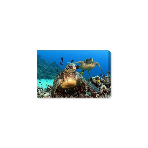 Oliver Gal 'Two Green Sea Turtle by David Fleetham' Animals Wall Art Canvas Print - Blue, Green