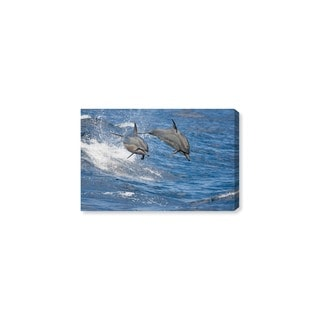 Oliver Gal 'Spinner Dolphins Hawaii by David Fleetham' Canvas Art