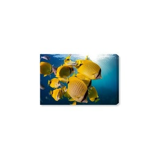Oliver Gal 'Milletseed Butterflyfish Close Up by David Fleetham' Canvas Art
