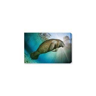 Oliver Gal U0027Manatee By David Fleethamu0027 Canvas Art