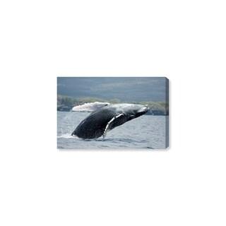 Oliver Gal 'Humpback Whale by David Fleetham' Canvas Art