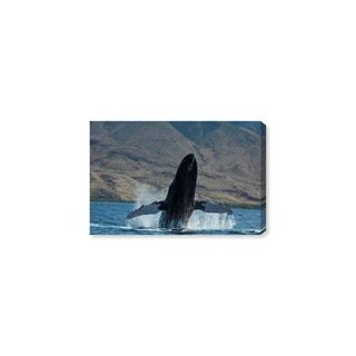 Oliver Gal 'Humpback Whale Hawaii by David Fleetham' Canvas Art