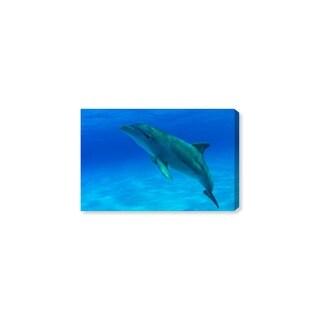 Oliver Gal 'Bottlenose Dolphin Bahamas by David Fleetham' Canvas Art