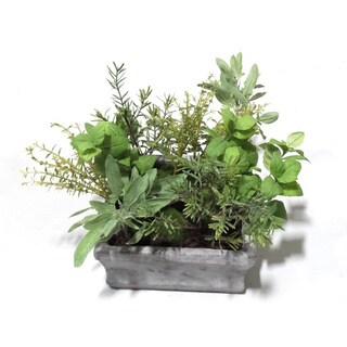 SQUARE CEMENT PLANTER|https://ak1.ostkcdn.com/images/products/15811170/P22225710.jpg?_ostk_perf_=percv&impolicy=medium
