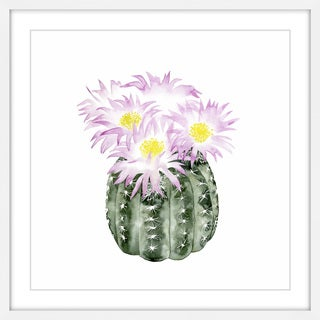 Cactus Bloom I' Framed Painting Print
