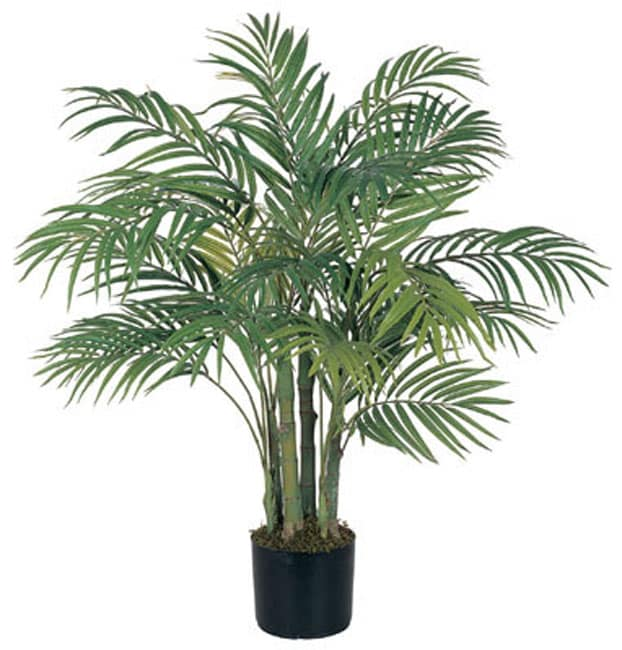 Areca 3 Foot Silk Palm Tree Free Shipping Today