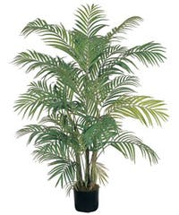The Curated Nomad Zaius Areca Silk Palm Tree
