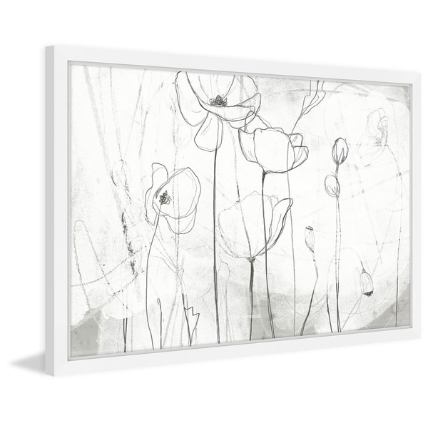 Poppy Sketches I' Framed Painting Print
