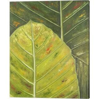 Patricia Pinto 'Green Zoom II' Canvas Art