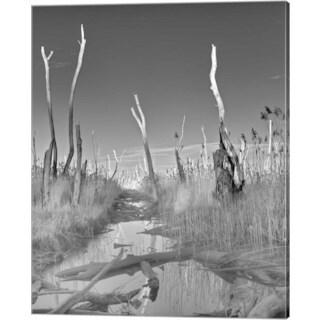 Geoffrey Ansel Agrons 'Hoax' Canvas Art