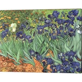 Vincent Van Gogh 'Irises, 1889' Canvas Art