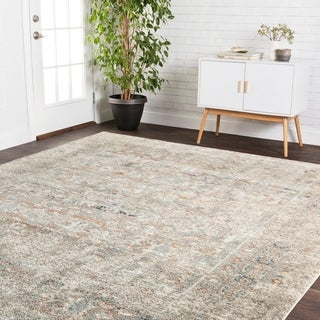 Alexander Home Genova Granite Border Distressed Rug - 12' x 15'