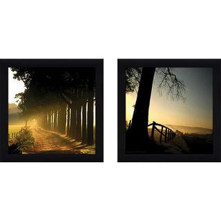 """Morning Glory"" Wall Art Set of 2, Matching Set"