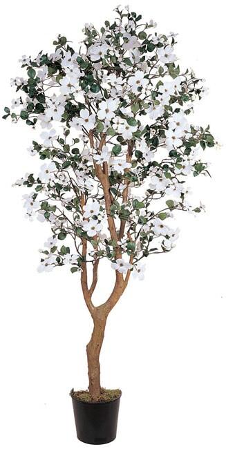 5-foot Dogwood Silk Tree