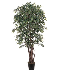 Smilax 6-foot Silk Tree