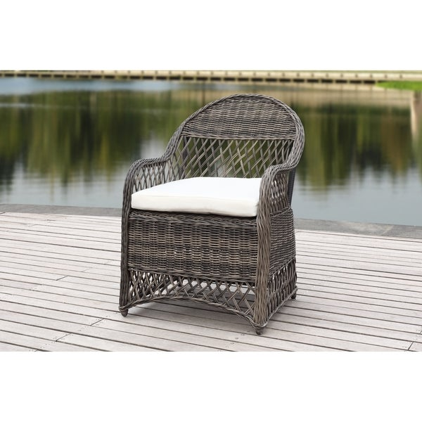 Safavieh Davies Grey/Beige Wicker Arm Chair With Cushion