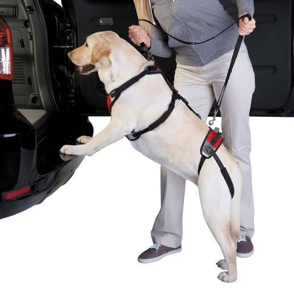 Pet Naturals Lift & Go Lead Harness Pet Leash (M), Red