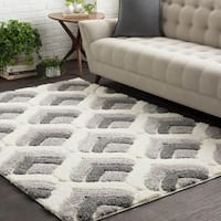 Soft Patterned Shag White and Grey Area Rug (2' x 3')