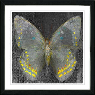 Studio Works Modern Framed Contemporary Fine Art Still Life 'Shade Butterfly' Wall Art Giclee Print by Zhee Singer