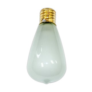 Edison Vintage Antique Frosted Bulbs - 12 pack - intermed size bulb. 5-7 Wattage