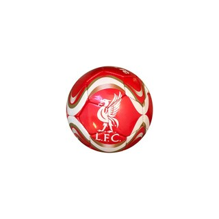 Liverpool FC Silver #5 Soccer Ball