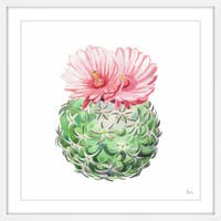 Pink Blossoming Cactus' Framed Painting Print