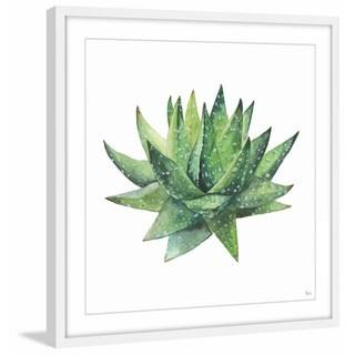 Zebra Cactus' Framed Painting Print
