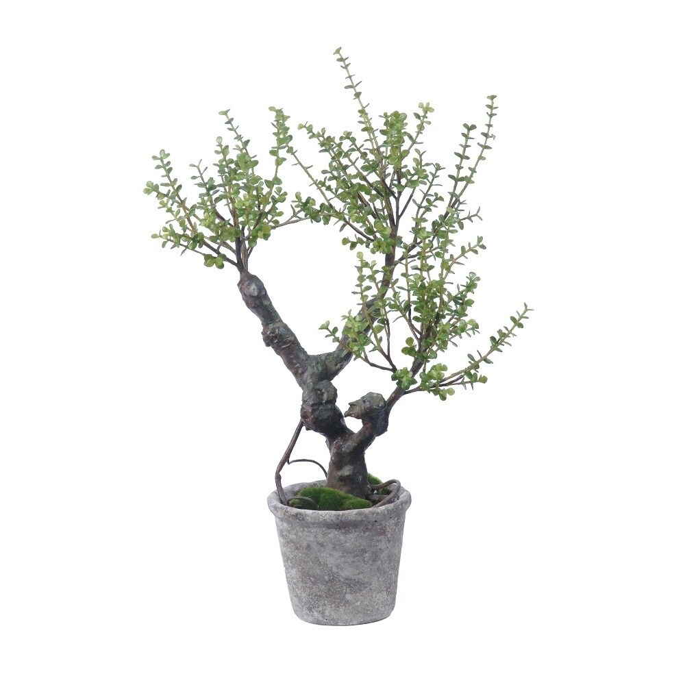 Gold Eagle Jade Silk Potted Plant (green)