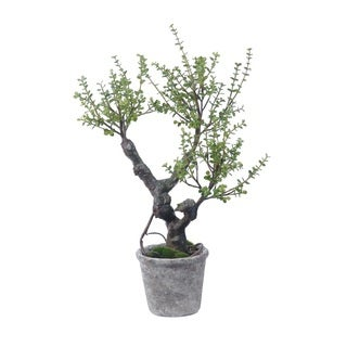 Gold Eagle Jade Silk Potted Plant