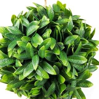 Jeco 9-inch Round Topiary