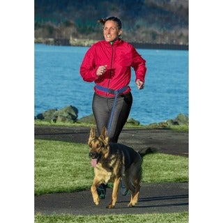FurHaven Trail Pup Hands-Free Dog Leash