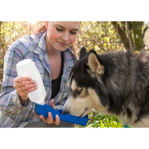 FurHaven Pet Water Bottle - 500 ml