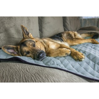 FurHaven ThermaNAP Plush Velvet Self-Warming Pet Blanket