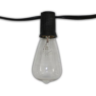 Edison Vintage 25-foot 25-light Cord with Clear Antique 18-gauge Bulbs