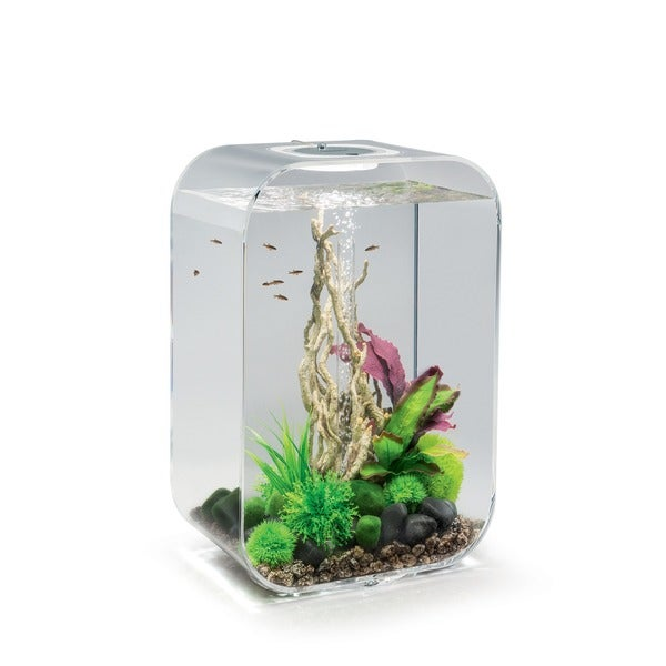 biorb life 45 clear aquarium free shipping today. Black Bedroom Furniture Sets. Home Design Ideas